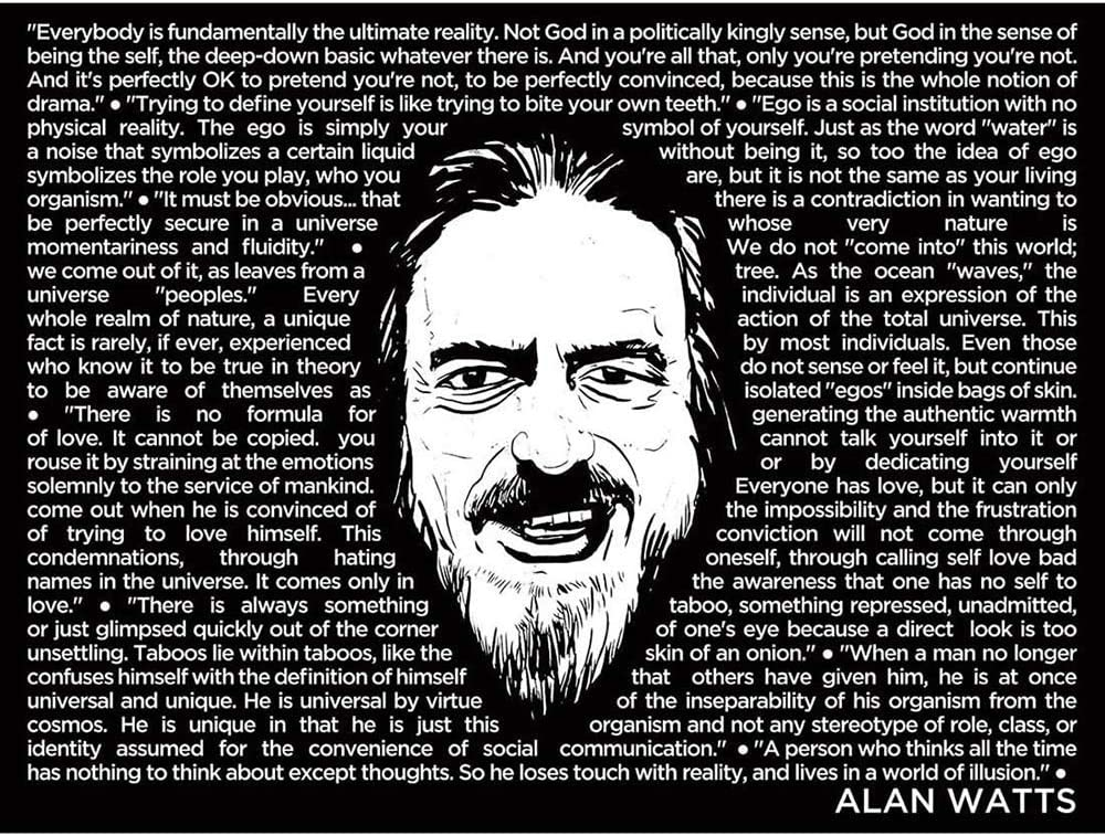 Wee Blue Coo Alan Watts Everybody is Fundamentally Ultimate Face Quotes Unframed Wall Art Print Poster Home Decor Premium