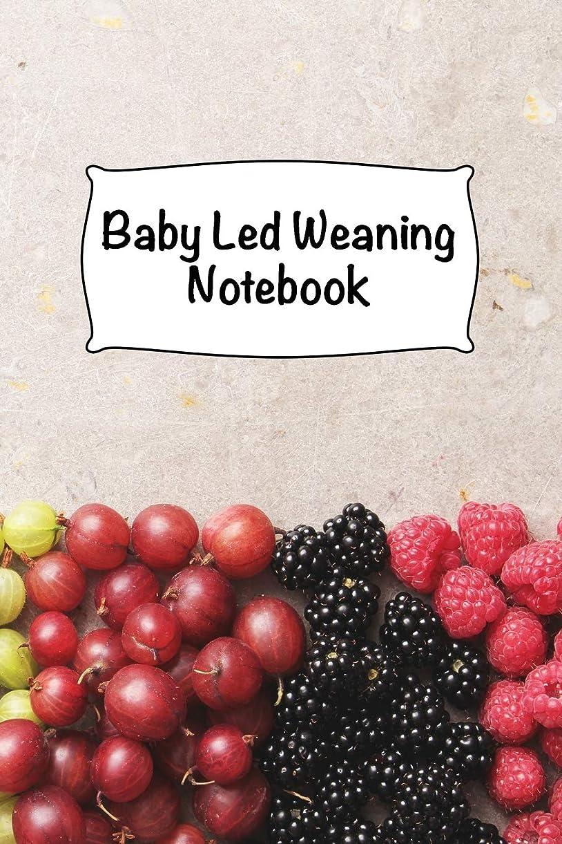 キャンドル死驚いたことにBaby Led Weaning Notebook: Baby Dietary Record Journal - 6 x 9 in - 120 pages