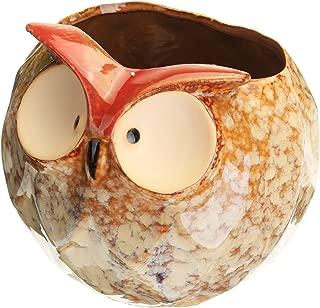 Global Brands Online Garden Home Flower Pot Owl Cerámico Manualidades Decoración Planter 4.7 Inch Planta de plantas suculentas