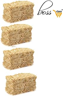 Family Boys Girls (Exclusive Porte ADRESSE) Mini Thanksgiving Fall Harvest Autumn Fall Decorations Straw Bales, 2 1/2-Inch x 2.5 inch x 3.5 inch Hay Bale Bundle of 4