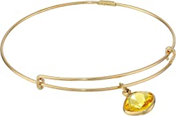 Precious Sunflower Intellect Charm Bangle