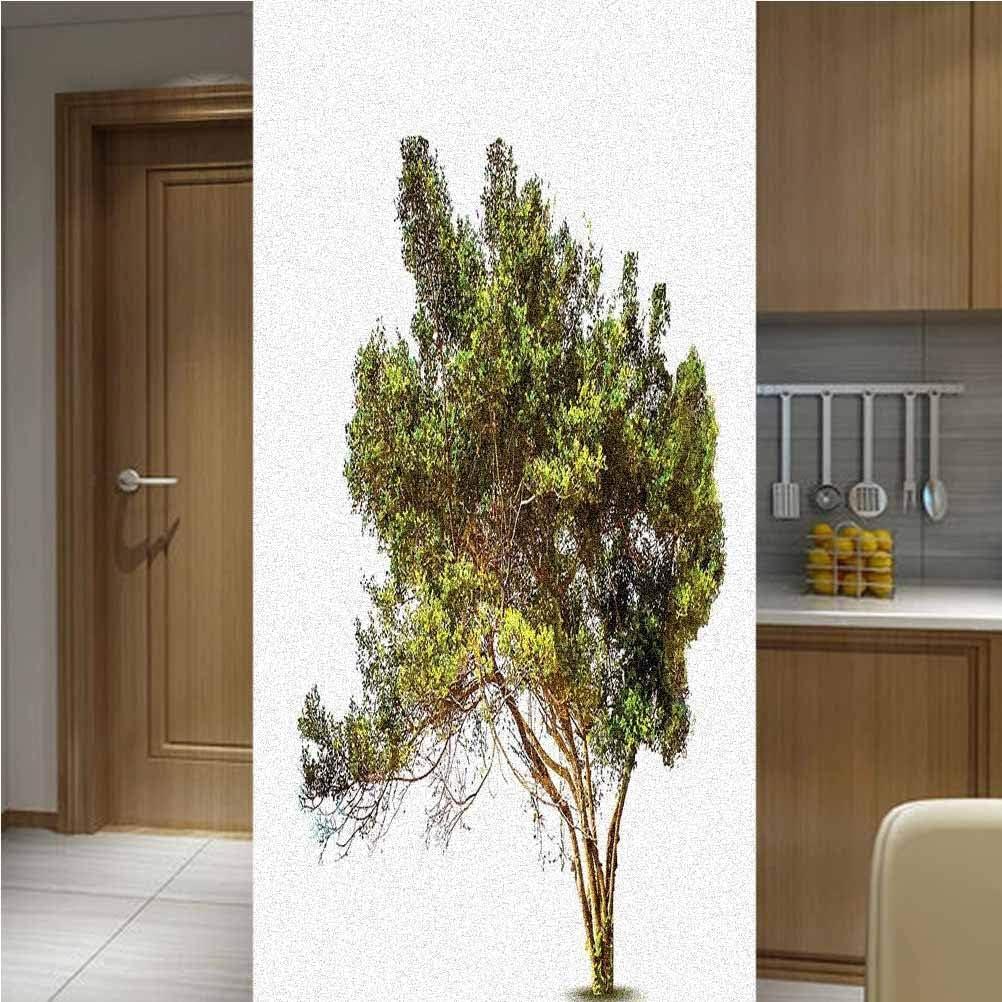 Tree Frosted Window Film Privacy An 35% OFF 100% quality warranty! Piece One Glass 48x78