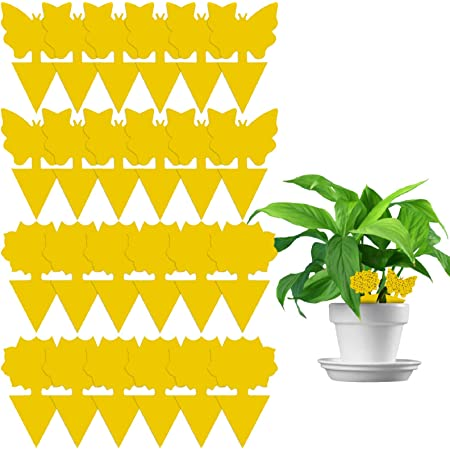 20x Insect Trap Yellow Houseplant Sticky Stakes Traps Fly Glue Fungus Trappers