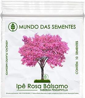 10 Sementes de Ipê Rosa Bálsamo - Tabebuia pentaphylla