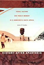 History after Apartheid: Visual Culture and Public Memory in a Democratic South Africa