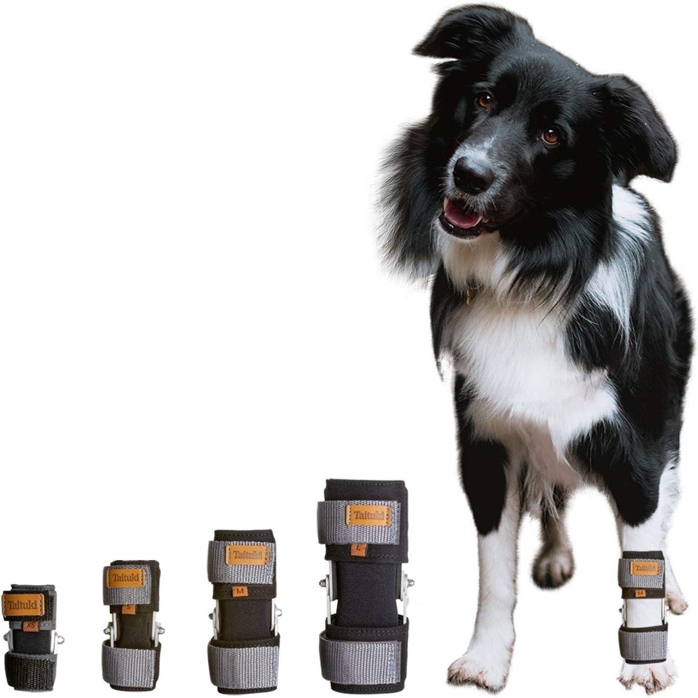 Taituki Dog 新作続 今だけ限定15%OFFクーポン発行中 Front Leg Joint Support Arthritis for and Wrist
