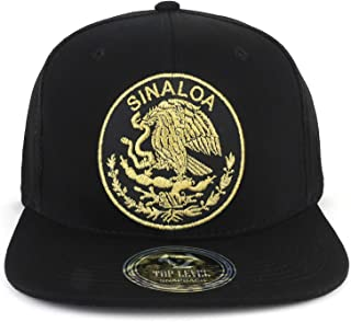 TOP LEVEL APPAREL City of Mexico Eagle Embroidered Flatbill Trucker Mesh Cap