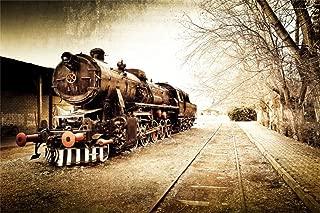 Leyiyi 10x8ft Czech Old Locomotive Backdrop Steam Punk Abandoned Train Russia Railway Station Heavy Metal Wild Winter Park Photo Background Western Cowboy Adult Portrait Studio Prop Vinyl Banner