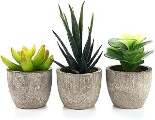 T4U Artificial Serie de Plantas Suculentas Hierba Decorativa de Plástico Colección 2, Paquete de 3