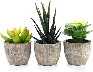 T4U Artificial Serie de Plantas Suculentas Hierba Decorativa