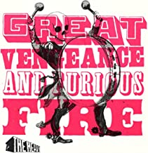 Best the heavy great vengeance and furious fire Reviews