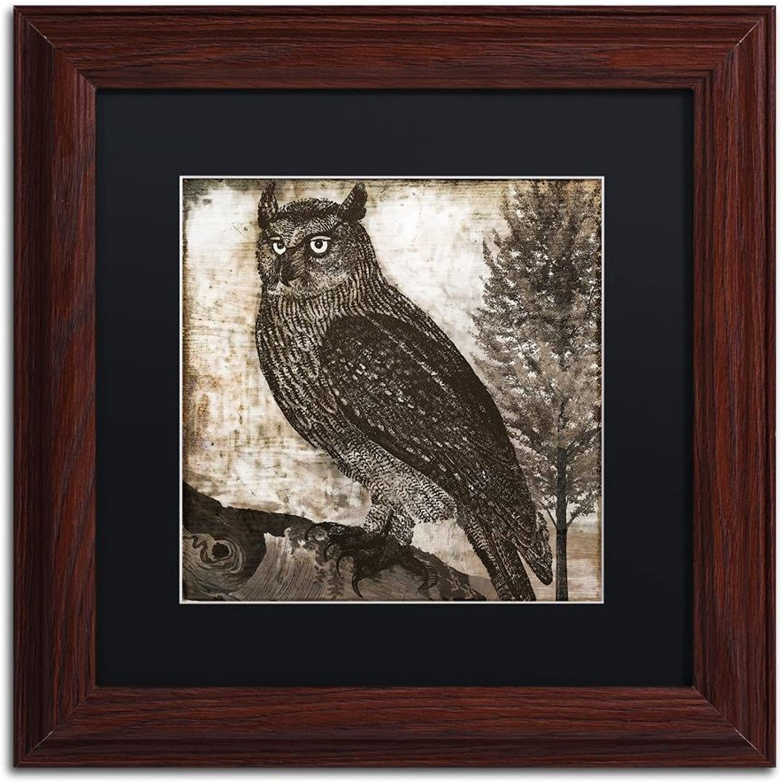Trademark Fine Art Owl 2 by color Bakery, Black Matte, Wood Frame 11x11, Wall Art
