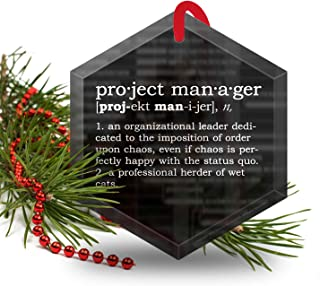 Project Manager Definition Funny Glass Christmas Ornament