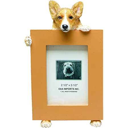 Welsh Corgi Picture Frame Holds Your Favorite 2 5 By 3 5 Inch Photo Hand Painted Realistic Looking Welsh Corgi Stands 6 Inches Tall Holding Beautifully Crafted Frame Unique And Special Welsh Corgi