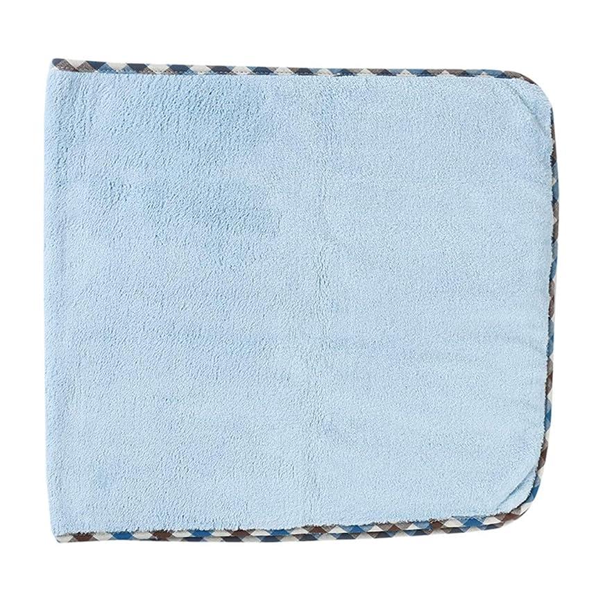 ディレクトリドリンク非アクティブVWH 厚く、毛羽立ちのない吸収性美容ウォッシュタオルバスルームのシャワータオル(水色)