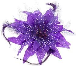 BAOBAO Women Wedding Party Mesh Flower Feather Hair Clip Fascinator Hairband Headband