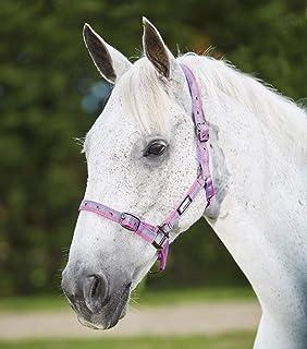 ROMA Stripe HEADCOLLAR Horse Rug