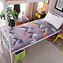 Futon Mattress, Foldable Breathable Non-Slip Antibacterial Tatami Mattress for Bedroom, Office and Student Dorm, 3 cm Thic...