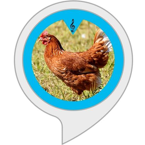 Hühnerlaute