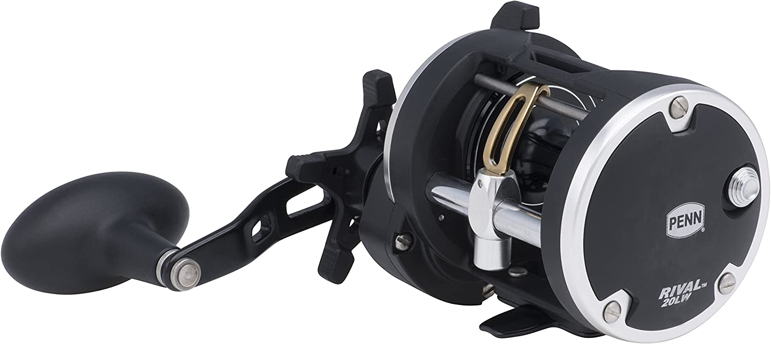 Penn UnisexAdult Penn, Rival Level Wind Conventional Reel, 20, 5.1 1 Gear Ratio, 2 Bearings, 29  Retrieve Rate, Right Hand, Clam Package 1403996, 29 Inches