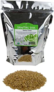 Handy Pantry Organic Barley Grass - Whole (Hull Intact) Barleygrass Seed - Ornamental Barley Grass, Juicing - Grain for Be...