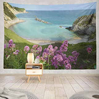 Best purbeck heritage coast Reviews