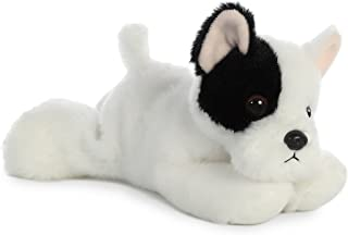 white mini french bulldog