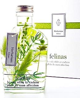フェリナス ハーバリウム (ナチュラル グリーン) 敬老の日 花 ギフト 贈り物 結婚 記念日 誕生日 プレゼント whisky-green