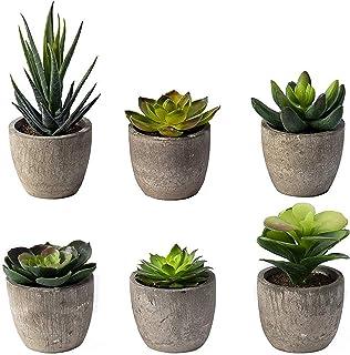 Tebery Lot de 6 Plantes artificielles en Pot artificielles artificielles pour Cactus et Cactus