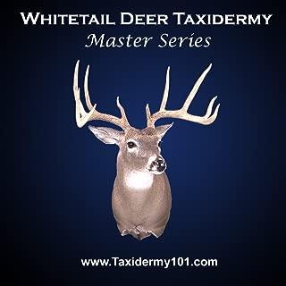 deer taxidermy videos