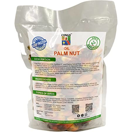 CONGO Natural Parrot Treat Oil Palm Nuts Provide Highly Protein, Vitamins and Minerals for Parrot, 1kg