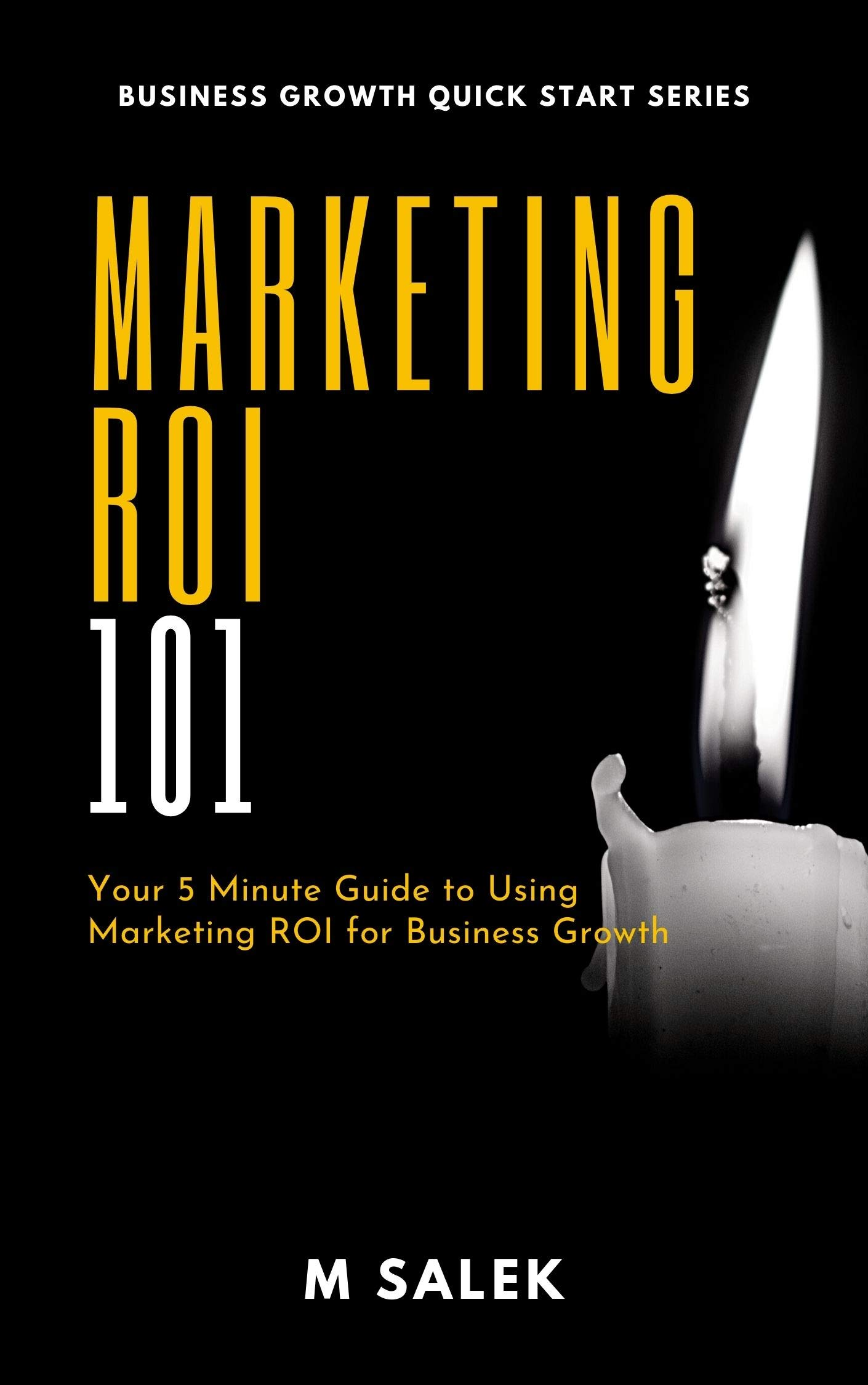 Marketing ROI 101: Your 5 Minute Guide to Using Marketing ROI for Business Growth (Business Growth Quick Start Series Book 12)