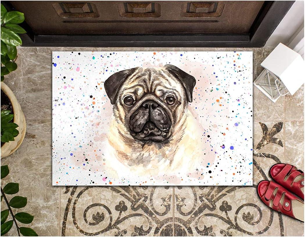 LIFESELAZ Dog Tucson Mall Doormat Pug Color Indoor Max 70% OFF Welcome Mat for Door