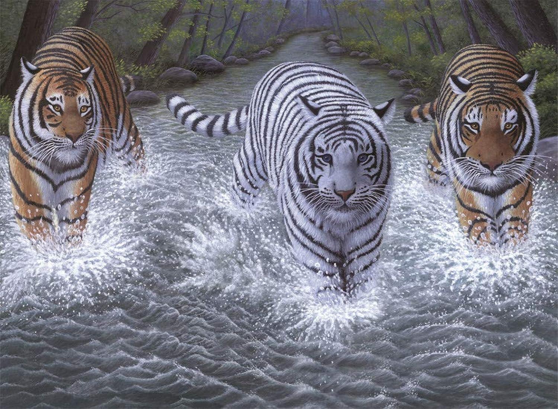 Malen Nach Zahlen Für Junior Malen Nach Zahlen Set Wasser Tiger Weiß Orange Tier Home Decor DIY Für Erwachsene-Framed B07Q1CZS83 | Mangelware