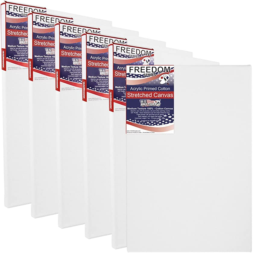 US Art Supply 30 X 36 inch Professional Quality Acid Free Stretched Canvas 6-Pack - 3/4 Profile 12 Ounce Primed Gesso - (1 Full Case of 6 Single Canvases)