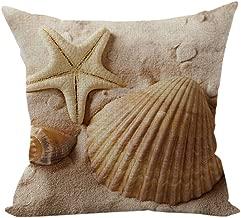 Best kong sea shells Reviews