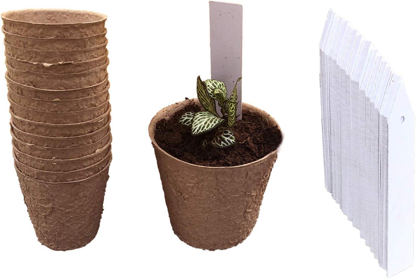 "WILD-WIND 90 4 years warranty Packs 3"" Seed Ranking TOP19 Starter Seedling Pots P pods"