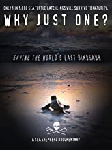 Best why just one documentary Reviews