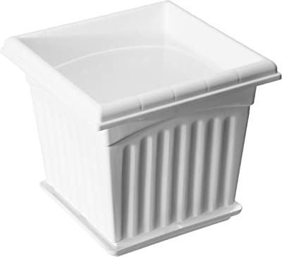 Gardens Need Square Planter with Drip Tray Set (12-inch, White, Pack of 2 Sets)