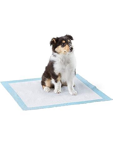 100 Piezas,Alfombrillas Muy absorbentes para Proteger el Suelo Empapadores de adiestramiento para Perro,Alfombra de Entrenamiento para higiene de mascotas-33 45 cm