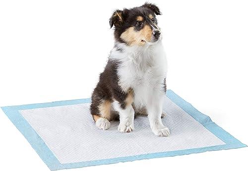 Amazon Basics Paquet de 80 tapis d'entraînement à la propreté très résistants pour animaux domestiques et chiots, Sta...
