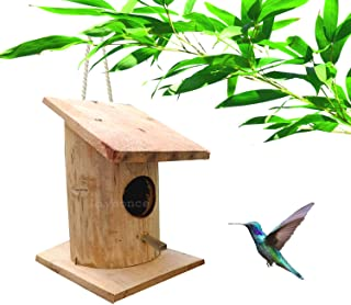 LIVEONCE Bamboo Made Side roof Bird nest Color -Natural (Green to Yellow)