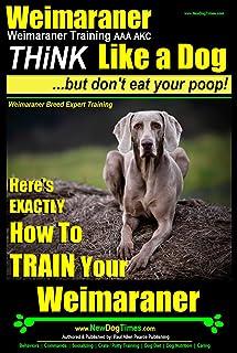 Weimaraner, Weimaraner Training AAA AKC   Think Like a Dog, But Don't Eat Your Poop!   Weimaraner Breed Expert Training: H...