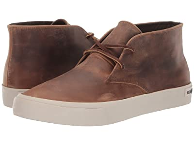 SeaVees Maslon Desert Boot Sur (Elmwood) Men