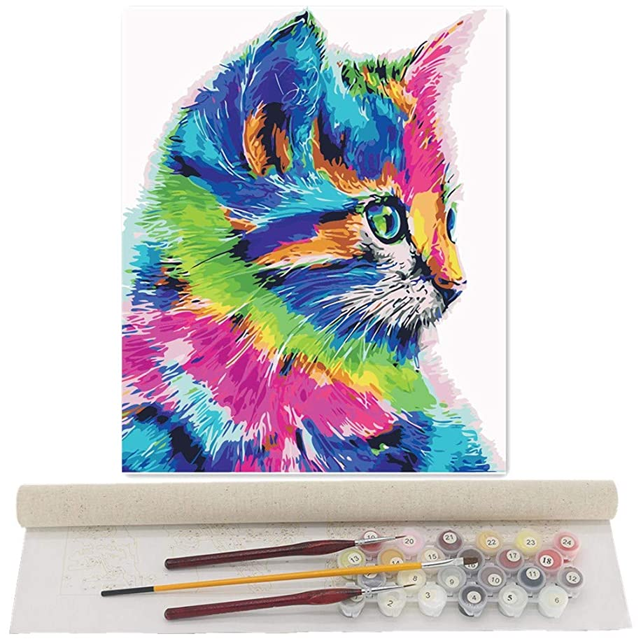 TwoSteps Paint by Numbers for Adults Kids Paint by Number Kits Rolled Canvas Fine Paintbrushes DIY Painting 16x20inch Lovely Colourful Cat
