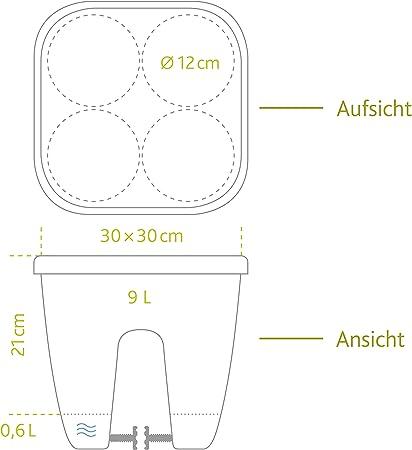 Emsa 5958220000 Affichage du Niveau deau pour jardini/ères Aqua-Comfort System