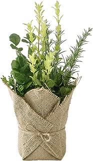Time Concept Decor Imitation Mixed Herbs Plant in Linen Pot Bag - Artificial Indoor Houseplant