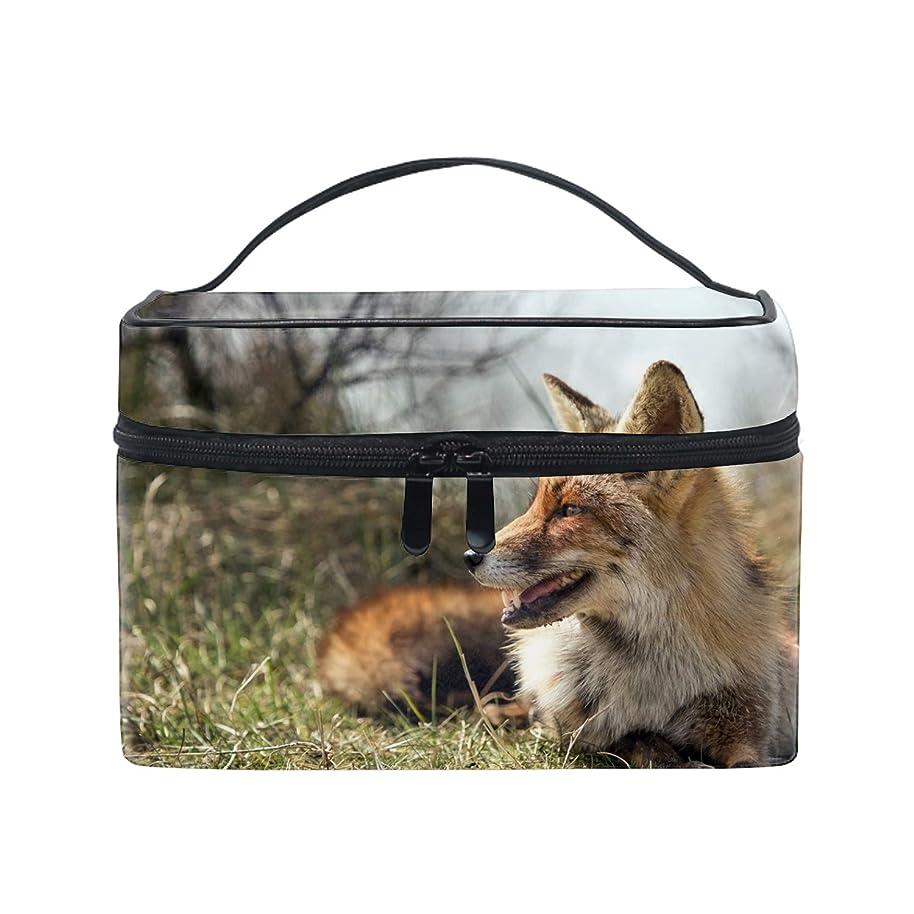 療法アフリカ人雪だるま便携式狐 メイクボックス 收納抜群 大容量 可愛い 化粧バッグ 旅行