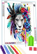 DCIDBEI 5D Full Drill Diamond Painting Kit Sch/ädel im Wasser DIY Diamond Strass Painting Kits f/ür Erwachsene und Anf/änger Stickerei Kunsthandwerk Kreuzstich Kit Home Decor Familienornamente 30X40CM