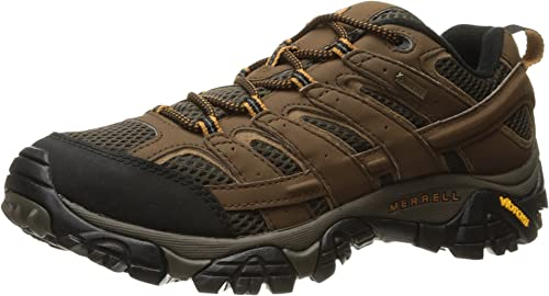 Moab 2 GTX Low Rise Hiking Boots, Brown